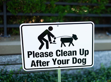 clean up after your dog apartment complex sign
